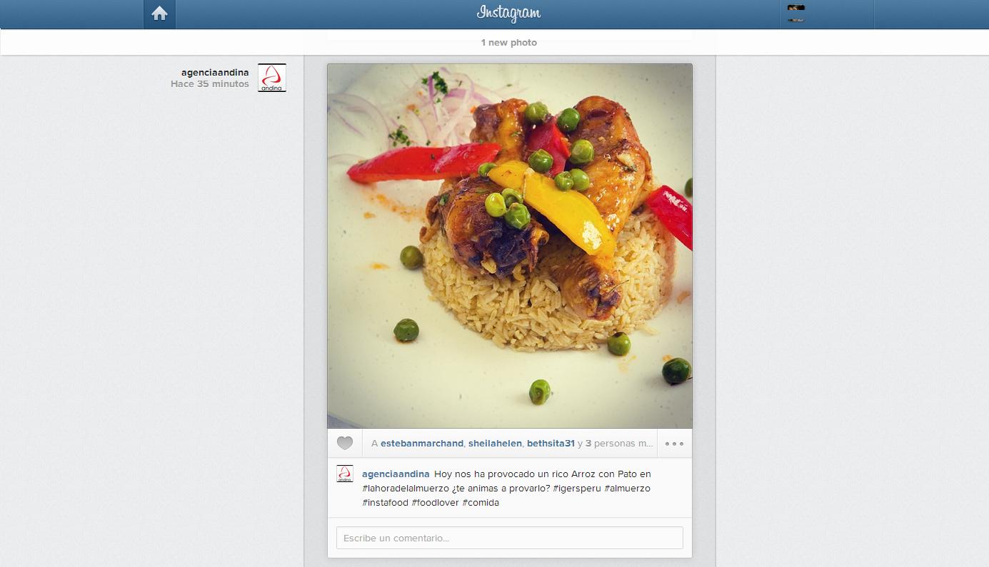 instagram feed web